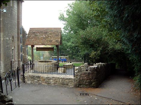 Dog-friendly pub and dog walk, Somerset - Somerset dog walks.jpg