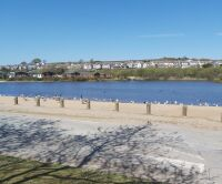 Dog friendly beach with sand dunes, plus one mile walk to dog friendly pub., Cornwall - 1 Pra Pond.jpg