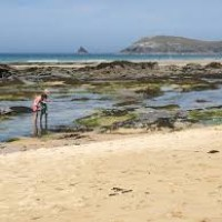 Constantine Bay dog walk and dog-friendly beach, Cornwall - constantine bay.jpg