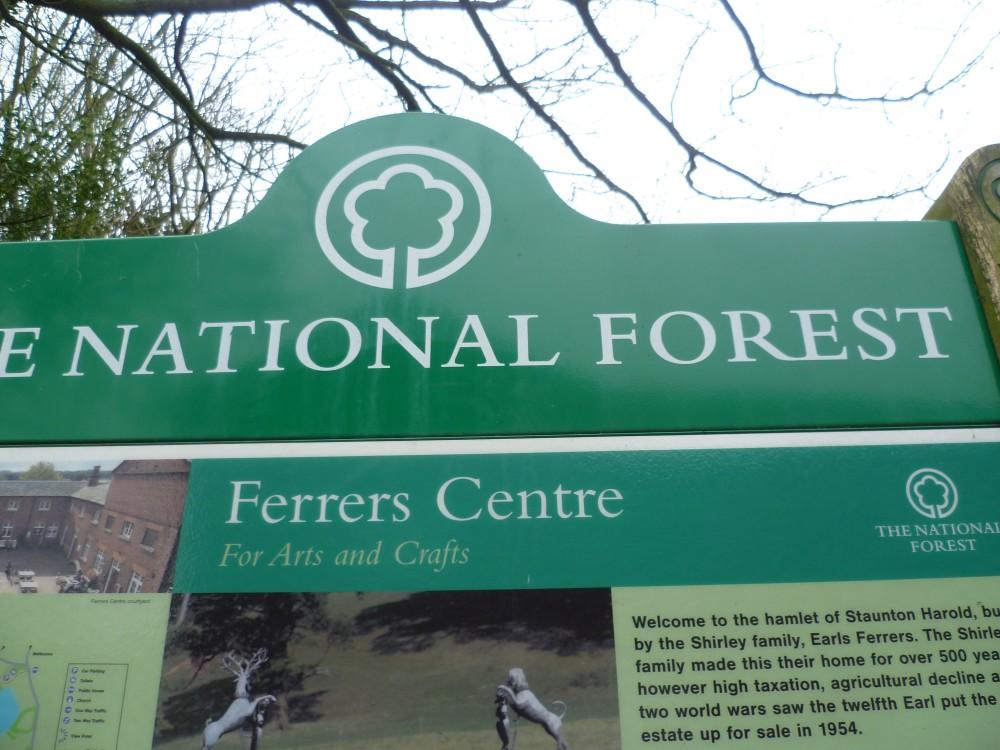 National Forest dog walk, Derbyshire - Dog walk in the National Forest