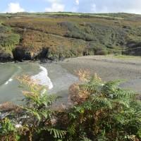Ceibwr dog-friendly beach, Wales - IMG_5843.JPG