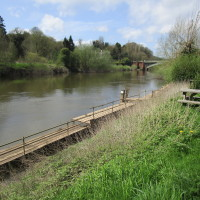 Holt Fleet dog-friendly pub and dog walk, Worcestershire - Dog walks in Worcestershire