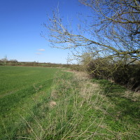 A429 near Shipston dog walk and dog-friendly pub, Warwickshire - Dog walks in Warwickshire