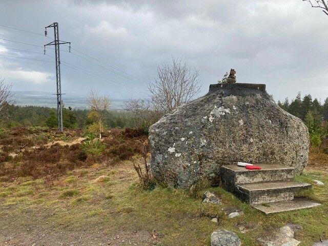 Tain Hill dog walk, Scotland - Tain 4.jpg