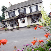 A217 Banstead dog-friendly inn, Surrey - Surrey dog-friendly pubs.jpg