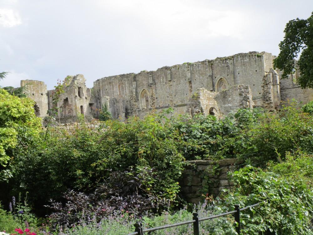 Abbey ruins dog walk near Richmond, Yorkshire - Dog walk in the Yorkshire National Park