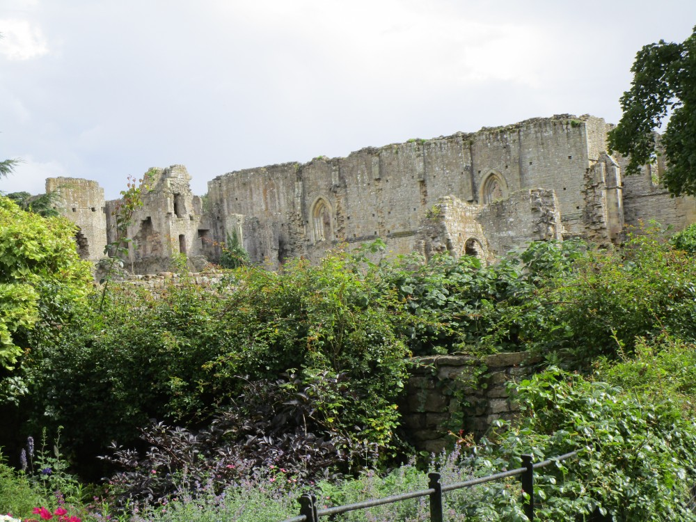 Abbey ruins dog walk near Richmond, Yorkshire - Dog walk in the Yorkshire National Park
