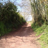 Off the beaten track country pub and dog walk, Somerset - underhill1.jpg