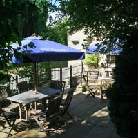 Dog-friendly dining pub and dog walks near Shaftesbury, Wiltshire - Wiltshire dog friendly pub and dog walk