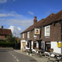 Staplehurst area dog walk and dog-friendly pub, Kent - Kent dog-friendly pubs with dog walks