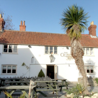 A354 Dorset ridgeway dog walk and dog-friendly pub, Dorset - Dorset dog-friendly pub and dog walk
