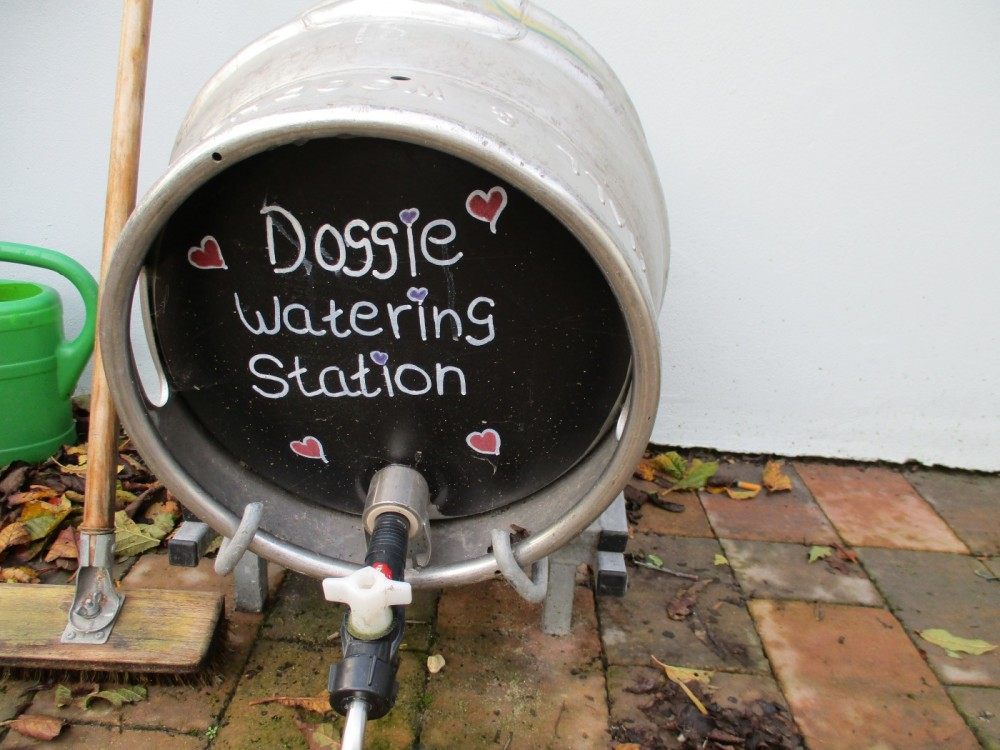Dog-friendly pub near Winterbourne Zelston on the A31, Dorset - IMG_0067.JPG