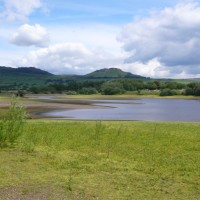 Tittesworth reservoir dog walk, Staffordshire - P1150919.JPG