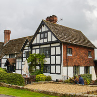 A23 London Road dog walk and dog-friendly inn, West Sussex - Sussex dog-friendly pub and dog walk