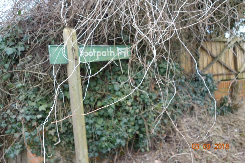 Beedon dog-friendly pub and dog walk, Berkshire - Berkshire dog friendly pub and dog walk1