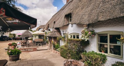 Medieval inn and dog walk near Andover, Wiltshire - Driving with Dogs