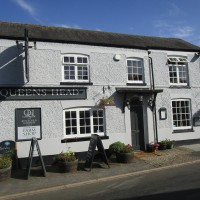 A6 dog walk and dog-friendly pub, Leicestershire - Dog walk and dog-friendly pub in Leicestershire