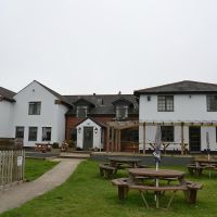 A352 dog-friendly pub and dog walk, Dorset - Dog-friendly place to stop on the A30.jpg
