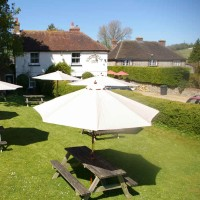 M3 / A3 doggiestop near Havant, West Sussex - Sussex dog-friendly pubs and dog walks.jpg