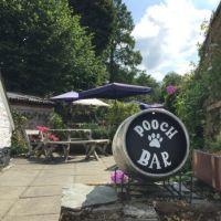 A386 Dog-friendly country inn with history, Devon - Devon dog-friendly pubs.jpg
