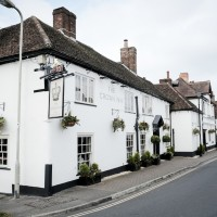 A32 dog-friendly pubs and dog walk, Hampshire - Hampshire dog-friendly pub and dog walk