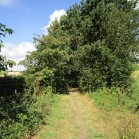Hoton dog walk and dog-friendly pub, Leicestershire - Leicestershire dog-friendly pub and dog walk