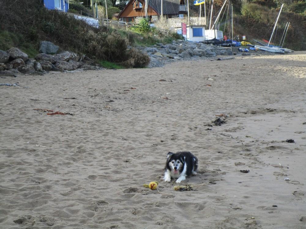 Tresaith beach and pub off the A487, Wales - IMG_5815.JPG