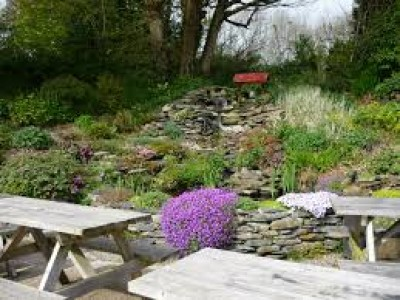Dog-friendly pub near Boncath, Wales - Driving with Dogs