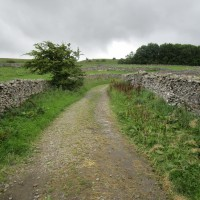 Doggiestop for a picnic and walkies, Yorkshire - Yorkshire dog-friendly pub and dog walk