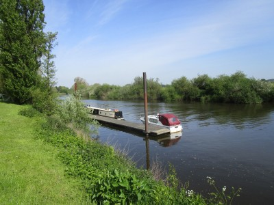 Riverside dog walk and dog-friendly hotel, Worcestershire - Driving with Dogs