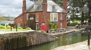 A377 canalside dog-friendly pub near Exeter, Devon - Driving with Dogs