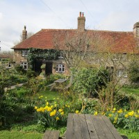 A27 dog walks and a stylish country pub, East Sussex - Sussex dog-friendly pub with dog walk.JPG