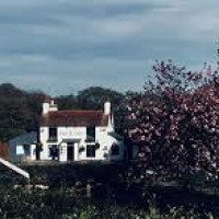 A24 dog-friendly country pub and dog walk, West Sussex - Sussex dog-friendly pubs.jpg