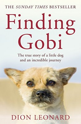Finding Gobi.jpg