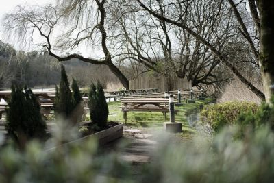 A30 dog-friendly pub and dog walk near Andover, Hampshire - Driving with Dogs
