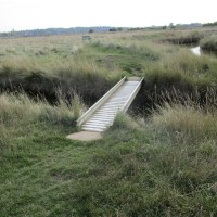 Sheerness country park dog walk, Kent - Kent dog-friendly pubs with dog walks