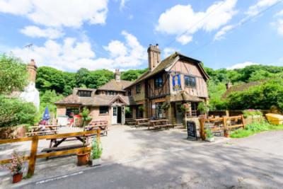 Surrey hills dog walk and dog-friendly pub, Surrey - Driving with Dogs