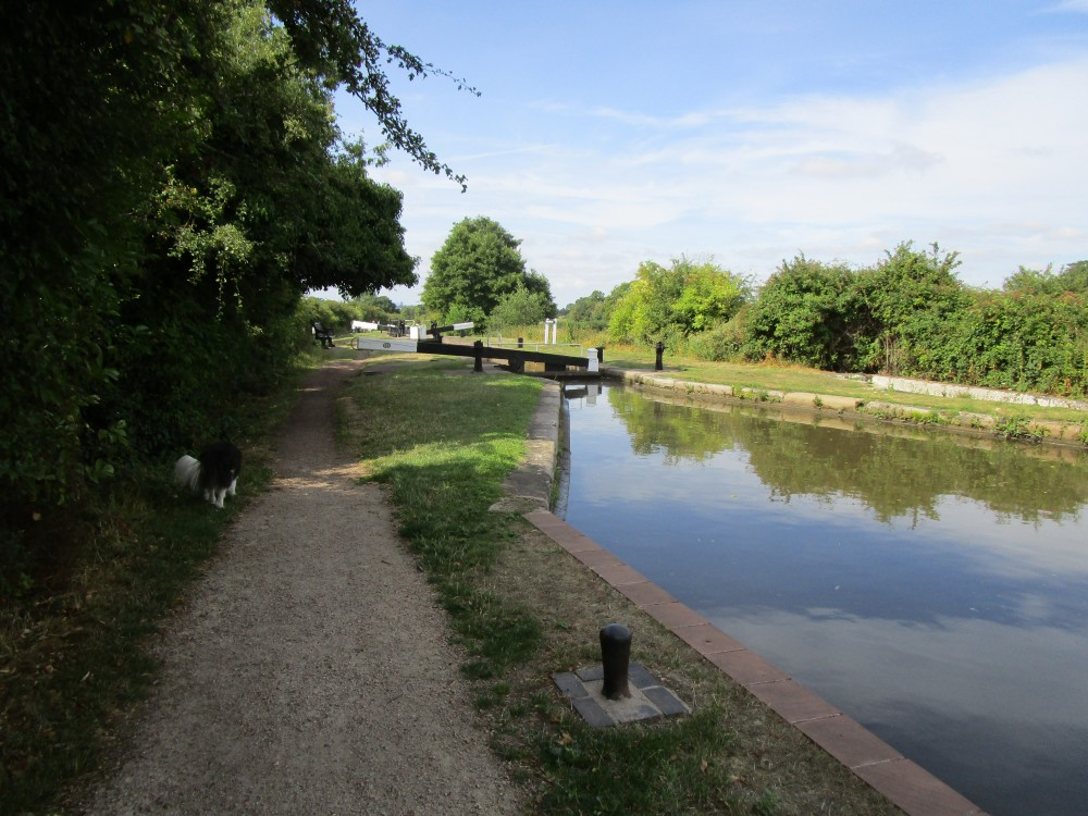 A38 dog walk and dog-friendly pub, Worcestershire - Dog-friendly pub and walk in Worcestershire