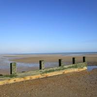 A259 coastal dog walk, Kent - Dog walks in Kent