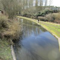 Black country canal pub and dog walk, Staffordshire - Dog walks in Staffordshire