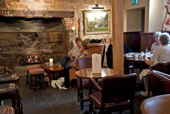 Dog-friendly inn with B&B near Okehampton, Devon - Dartmoor dog-friendly inns with B&B.jpg