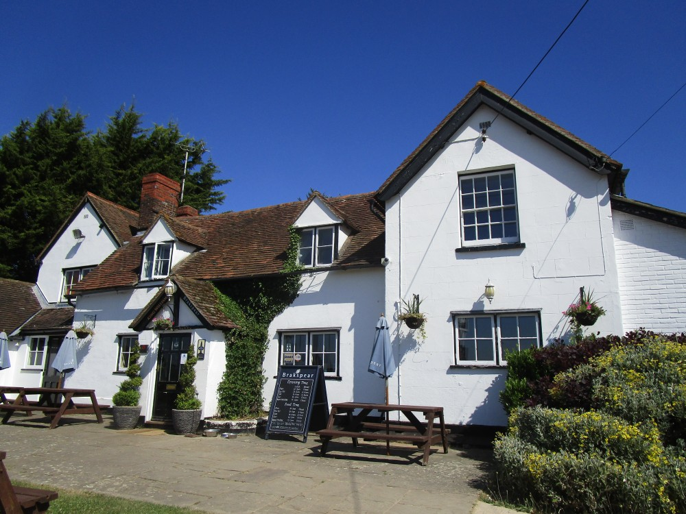 Wallingford area dog-friendly pub and dog walk, Oxfordshire - Oxfordshire dog walk with dog-friendly pub