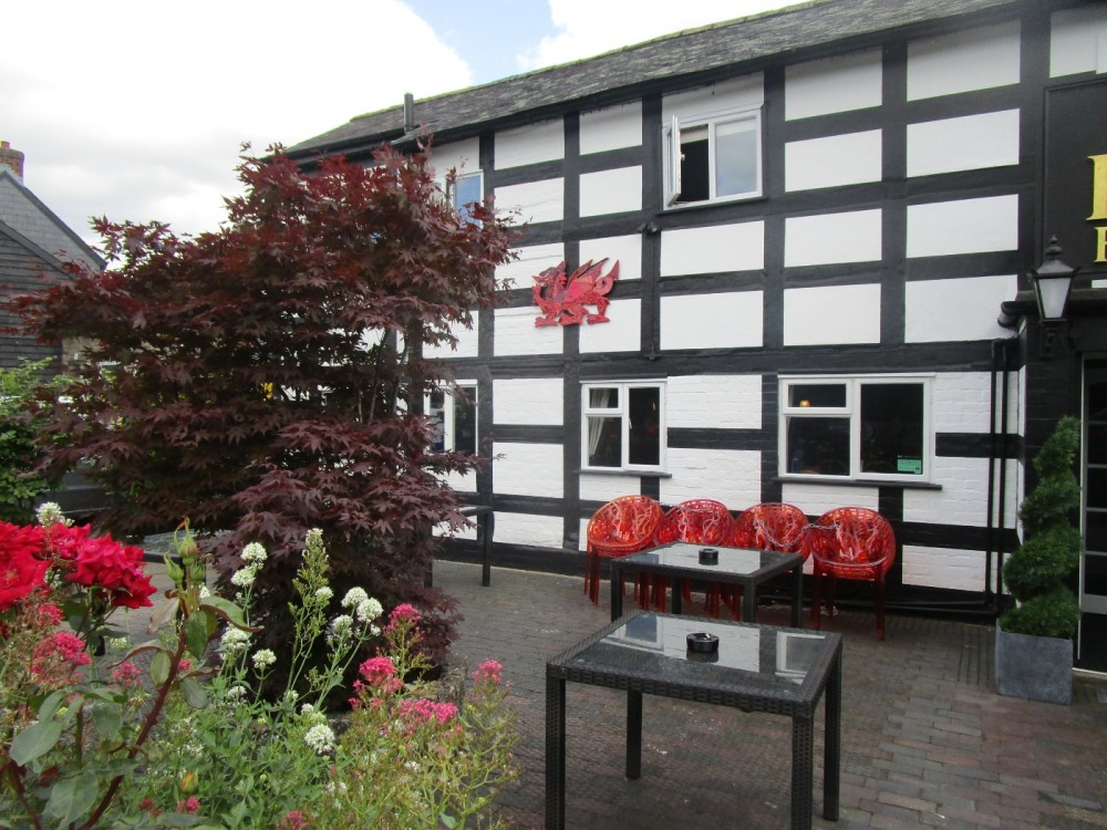 A483 dog-friendly pub, Powys, Wales - dog-friendly pubs and dog walks in Wales.JPG