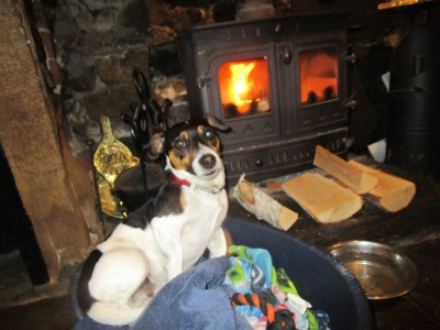 Dalesway dog walk and dog-friendly pub, Yorkshire - Driving with Dogs