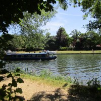 Dog walk and dog-friendly refreshments near Sonning, Oxfordshire - Dog walk and dog-friendly bar near the Thames