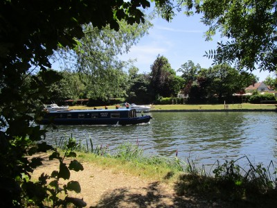 Dog walk and dog-friendly refreshments near Sonning, Oxfordshire - Driving with Dogs