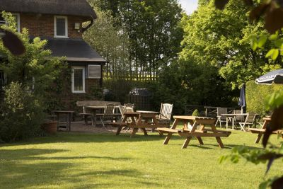 A31 dog-friendly pub and dog walk near Winchester, Hampshire - Driving with Dogs