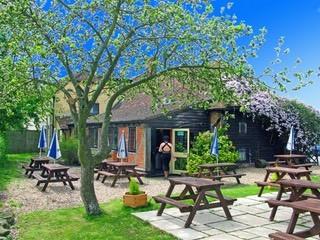 M4 dog friendly pub and dog walk near Reading, Berkshire - Berkshire dog walk and dog friendly pub