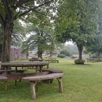 A47 dog walk near Swaffham, Norfolk - Dog walks in Norfolk