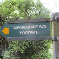 M40 Jct 6 dog-friendly pub and dog walk, Oxfordshire - Oxfordshire dog walk with dog-friendly pub